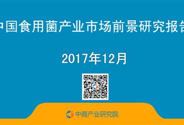2017年中国食用菌产业市场前景研究报告(简版)