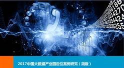 2017中国大数据产业园定位案例研究报告(简版)