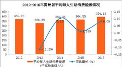贵州省人均生活消费能源情况分析(图表)