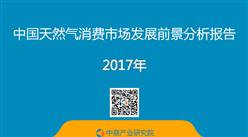 中國天然氣消費市場發展前景分析報告(附全文)