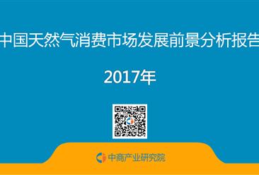 中国天然气消费市场发展前景分析报告(附全文)