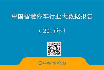 2017年中国智慧停车行业大数据报告(全文)