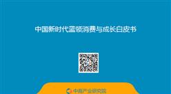 中國新時代藍領消費與成長白皮書(全文)