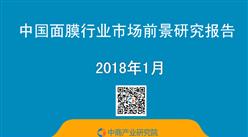 2018年中国面膜行业市场前景研究报告(简版)