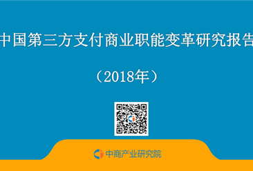 2018年中国第三方支付商业职能变革研究报告(全文)