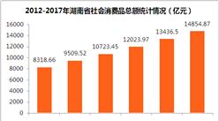 湖南省2017年消费品市场回顾及2018年发展趋势分析(附图表)
