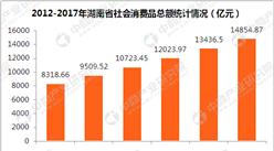 2017年湖南省消費品市場情況及2018年市場展望