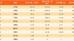 2017年全国各省市氧化铝产量排行榜:山东省产量第一!(附榜单)