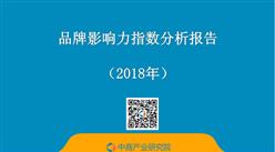 2018年品牌影响力指数分析报告(全文)