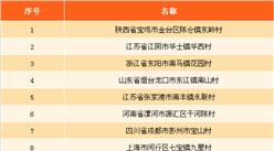 2017年名村发展指数前十排行榜:陕西宝鸡市东岭村位居榜首