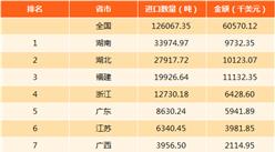 2017年中国云母进出口数据分析(附图表)