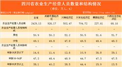 四川省农业生产经营人员情况数据分析:2016年农业生产经营人数达2429.13万