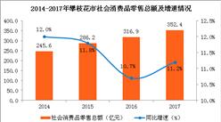 2017年攀枝花市消费品市场情况分析:零售总额突破350亿元(图)
