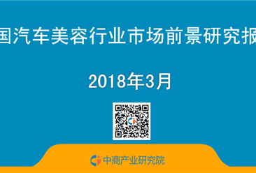 2018年中国汽车美容行业市场前景研究报告(简版)