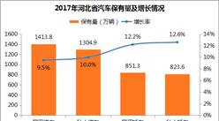 河北省汽车拥有情况分析:私人汽车保有量1304.9万辆 增长10%(附图表)
