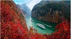 2018年1月重庆市旅游总收入超200亿元   同比增长21.07%(图表)