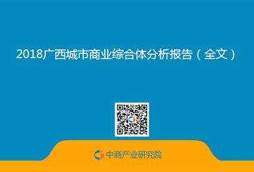 2018广西城市商业综合体分析报告(全文)