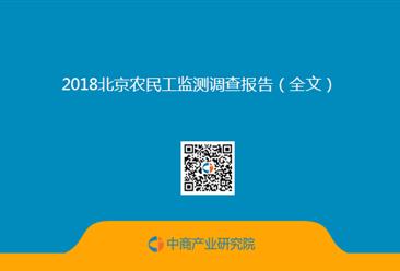 2018北京农民工监测调查报告(全文)