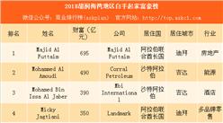 2018胡润海湾地区白手起家富豪榜:阿联酋富豪最多(附榜单)