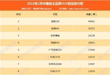 2018年2月中国自主品牌SUV销量排行榜