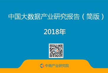 2018年中国大数据产业市场前景研究报告(全文)