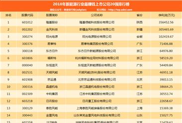 2018年新能源行业最赚钱上市公司20强排行榜