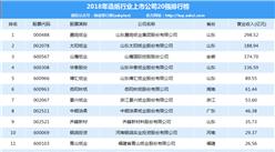 2018年造纸行业上市公司20强排行榜