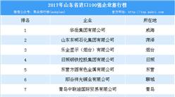 2017年山东省进口澳门永利国际娱乐100强排行榜