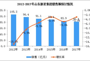 2017年山东新星集团经营数据统计分析(附图)