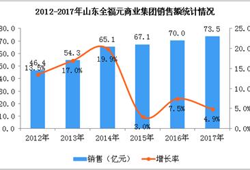 2017年山东全福元商业集团数据统计分析(附图)