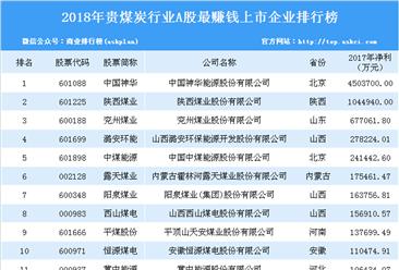 2018年煤炭行業最賺錢上市公司排行榜