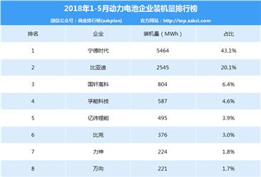 2018年1-5月中国动力电池企业装机量排行榜