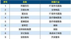 中国互联网20年大国品牌1000强排行榜