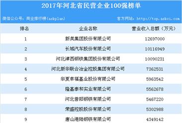 2017年河北省民营企业100强排行榜