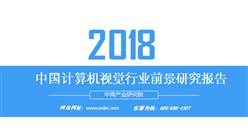 2018年中国计算机视觉行业前景研究报告(附报告全文)