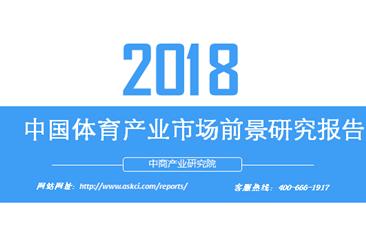 2018年中国体育产业市场前景研究报告(附全文)