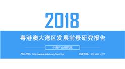 2018年粵港澳大灣區發展前景研究報告