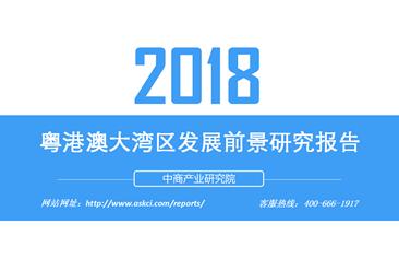 2018年粤港澳大湾区发展前景研究报告