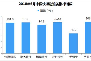 2018年6月中国快递物流指数101%:跨境快件业务增速放缓(附解读)