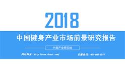 2018年中国健身产业市场前景研究报告(附全文)