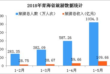 2018年1-5月青海省旅游數據分析:旅游收入增長32.6%(圖表)