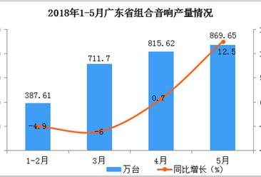 2018年1-5月广东省组合音响产量分析:预计后期市场将越来越好