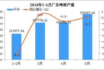 2018年1-5月广东省啤酒产量分析:预计后期市场将越来越好