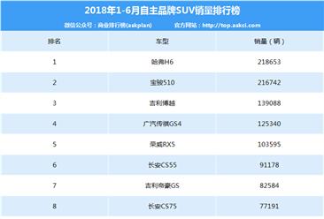 2018年上半年中国自主品牌SUV销量排行榜(TOP100)