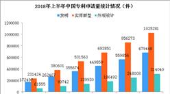 2018上半年中国专利数据统计分析:全国专利申请量超200万件(图)