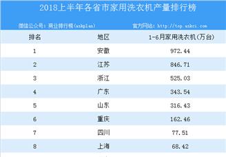 2018年上半年全国各省市家用洗衣机产量排行榜