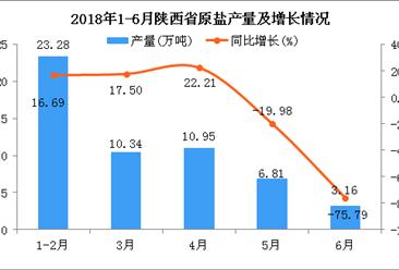 2018年6月陕西省原盐产量为3.16万吨 同比下降75.79%