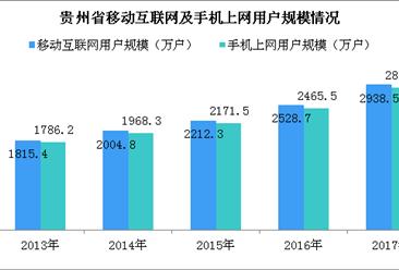 2017年贵州省互联网行业用户发展情况分析:手机上网用户占比突破98%(图)