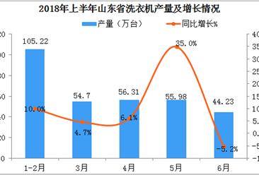 2018年上半年山东省洗衣机产量316.43万台  同比增长9.5%