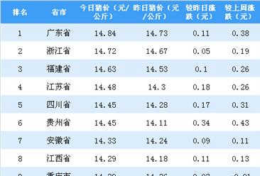 2018年8月13日全国各省市生猪价格排行榜